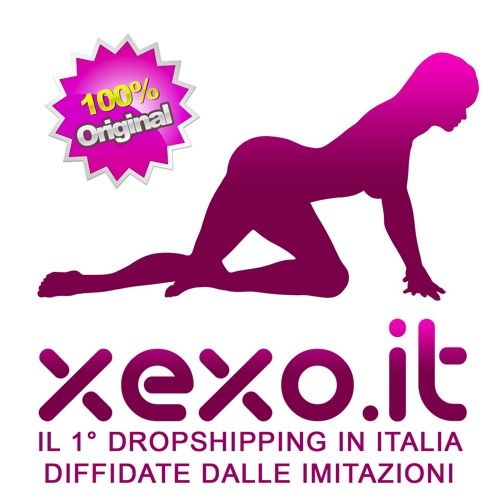franchising-logo-xexo-original