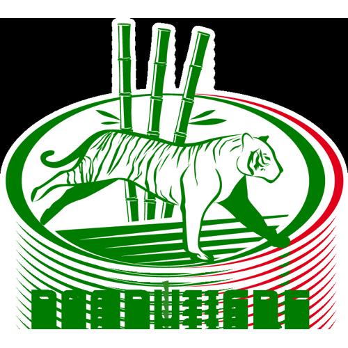 franchising-bambutigre-logo