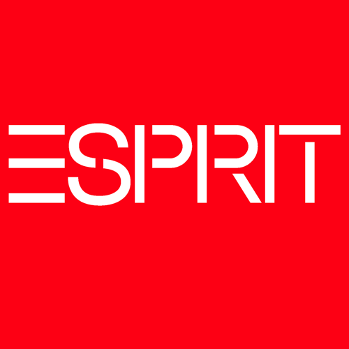 franchising-esprit-logo