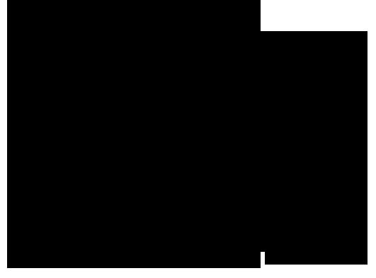 DANKO CON RIQUADRO NERO[1]