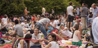 pixel picnic