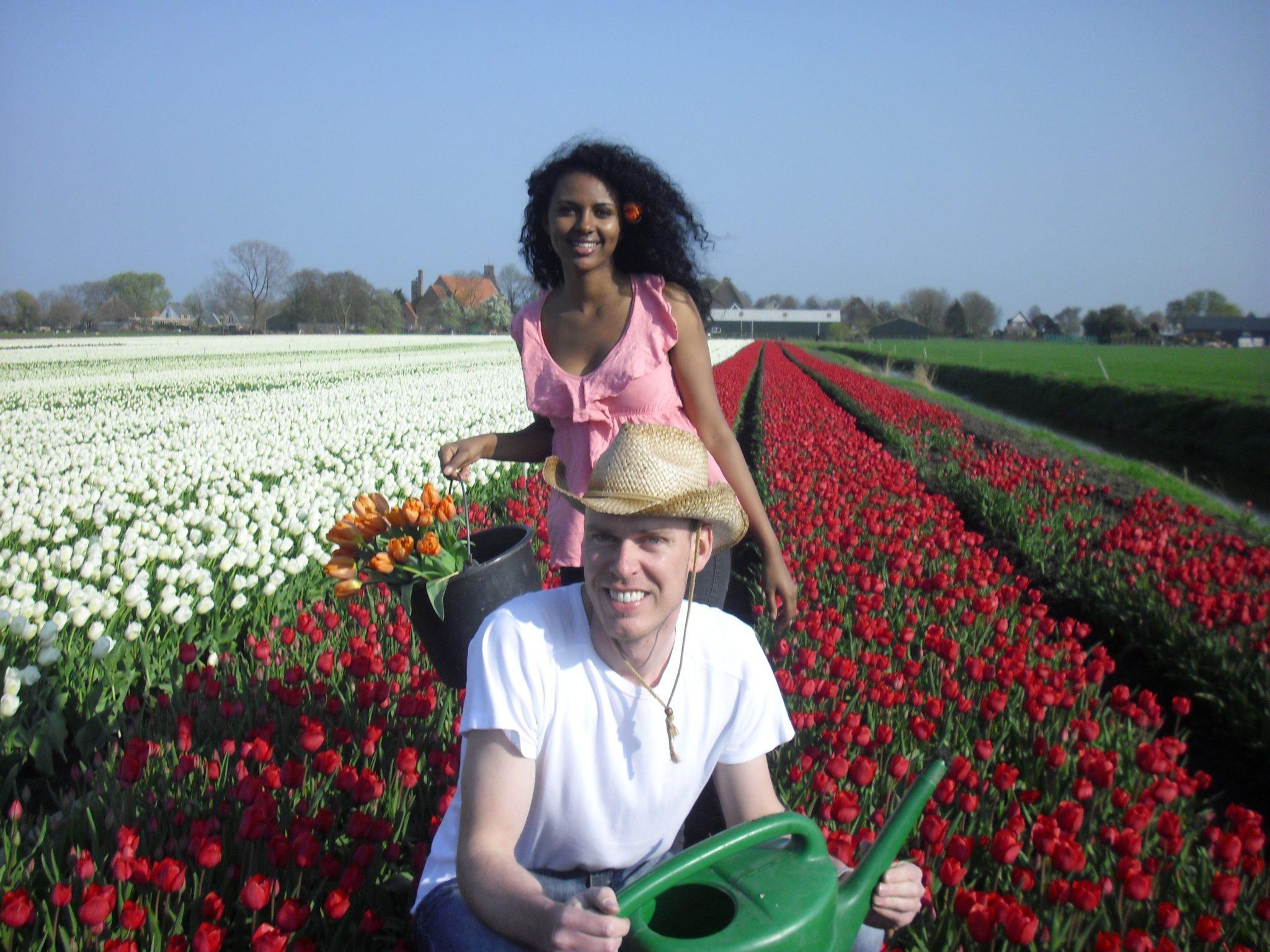 Un campo di tulipani alle porte di milano l 39 idea di un for Tulipani italiani