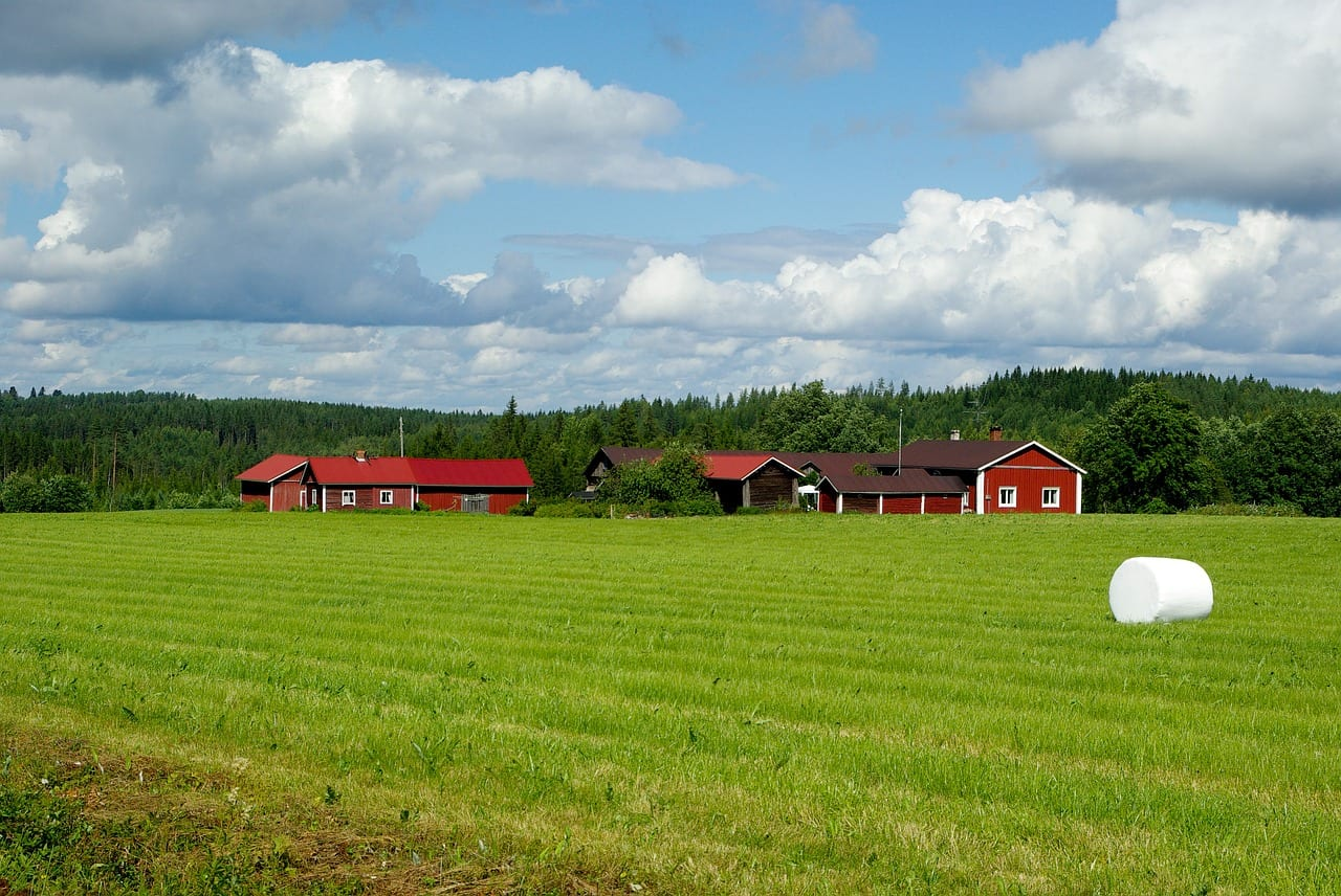 Finlandia è paese più felice del mondo