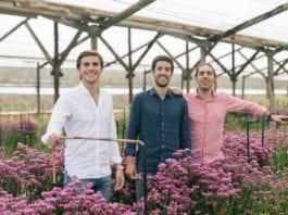 colvin startup fiori