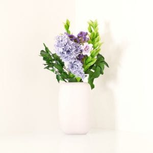fiori stabilizzati mirai