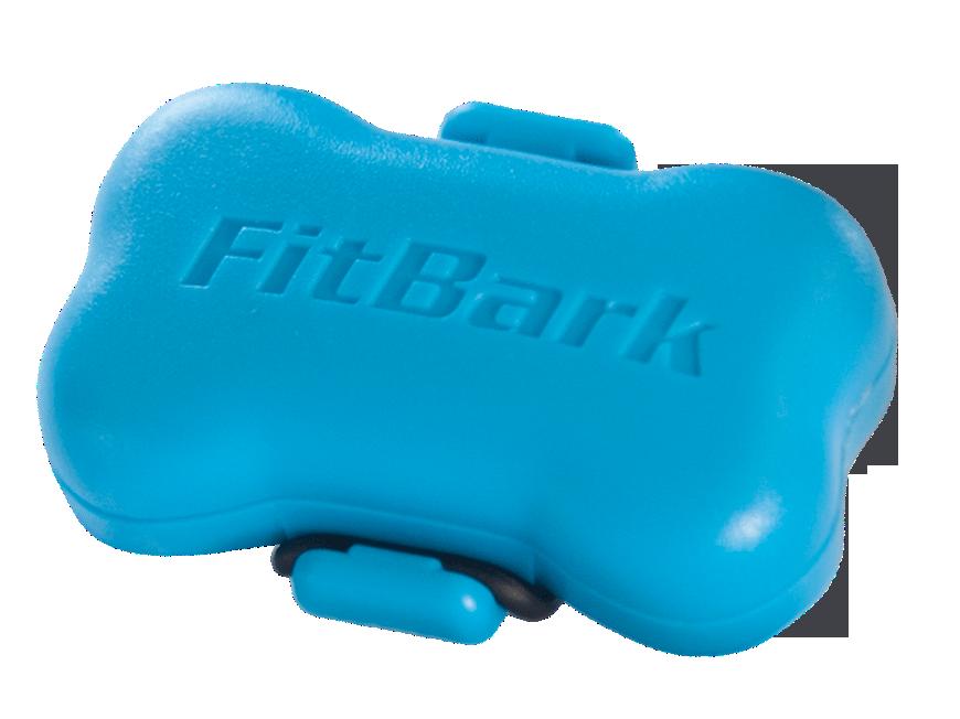 FitBark_Light Blue_Nobackground